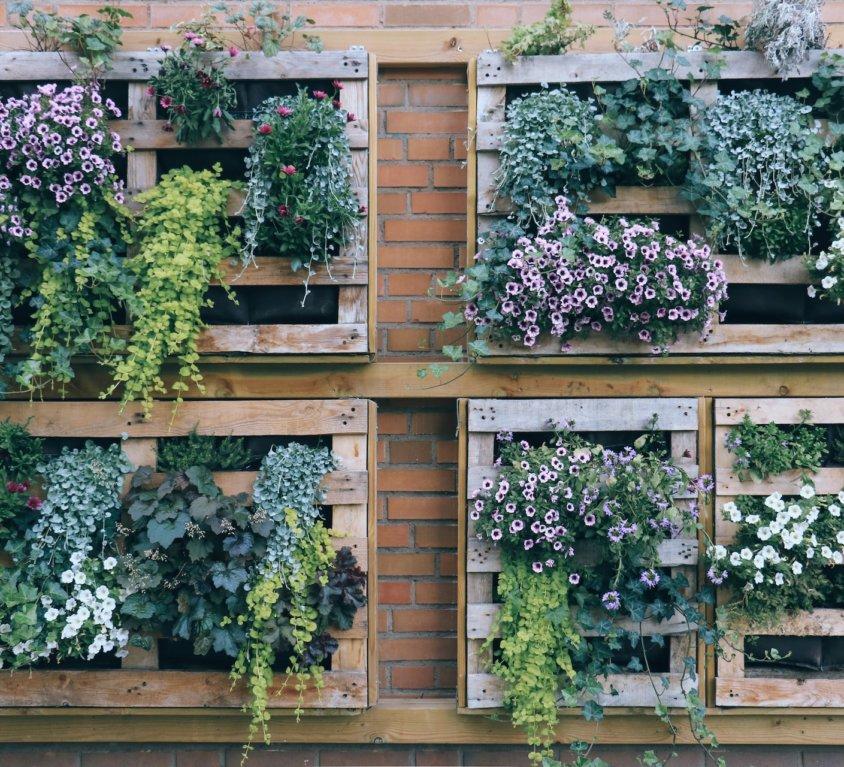 12 CZERWCA – Ogrody i tarasy
